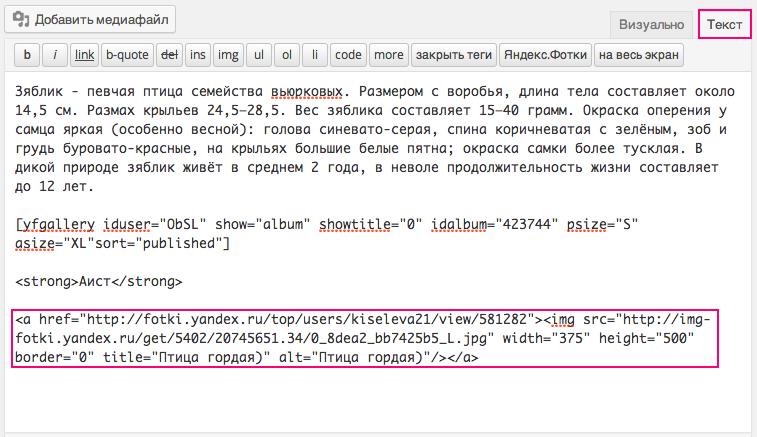 Пример вставки кода